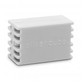 Cartus Silver Cube
